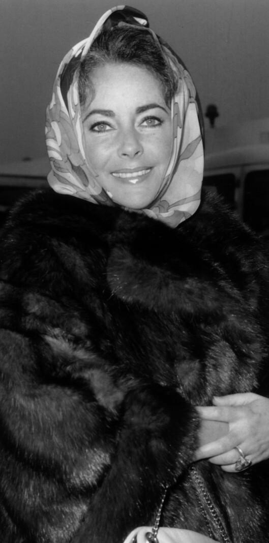 Skuespiller Elizabeth Taylor topper pelskåpen med et florlett silkeskjerf godt knyttet rundt hodet i 1958. Foto: All Over Press