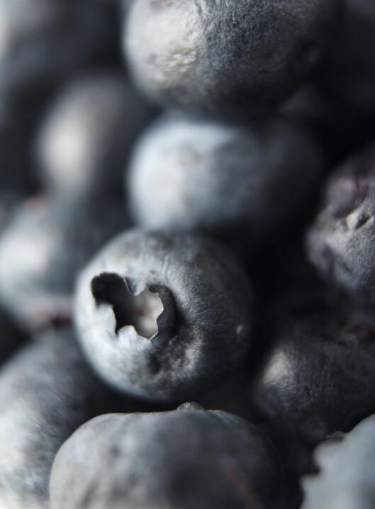 Blåbær er smekkfulle av antioksidanter. Det er bra for hjertet ditt.