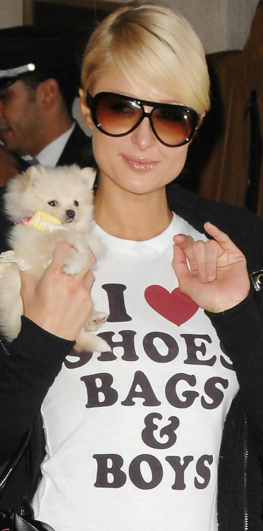 Er Paris Hilton dum, eller får hun menn til å bli dumme?