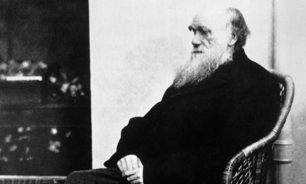 FJERNES: Evolusjonslærens far, Charles Darwin, skal slettes fra pensum i tyrkiske skoler. Foto: NTB Scanpix
