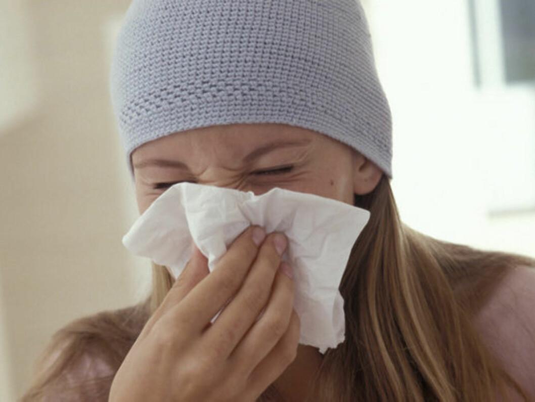 MUGGSPORER ELLER VIRUS? Er du sikker på at du er forkjølet, eller kan det være høstens allergi du nyser for?  Foto: www.imagesource.com