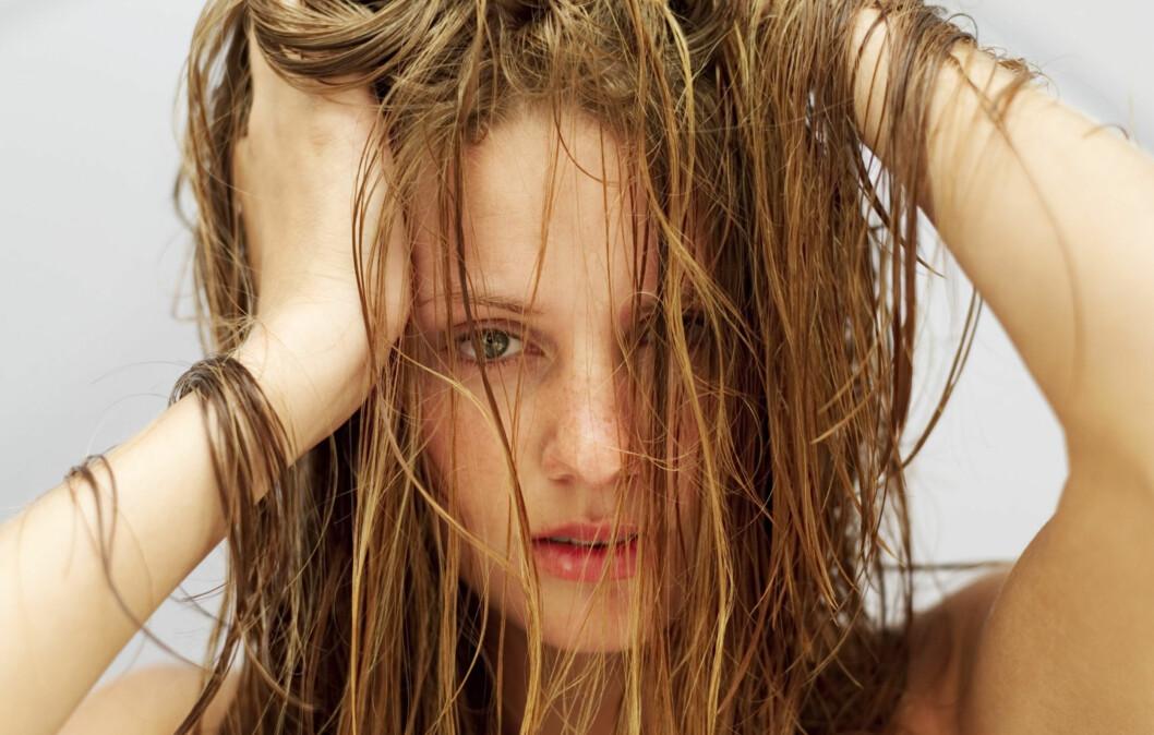 WET LOOK: Bør du tørke håret før du går ut i kulda? Foto: Getty Images