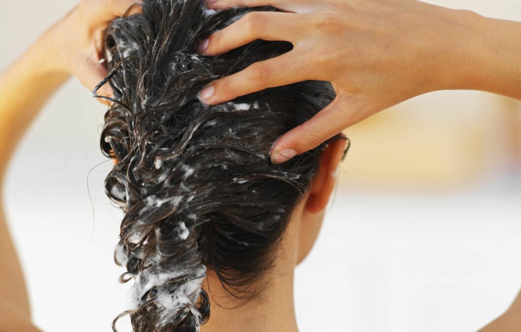 FÅ HELT RENT HÅR: Bruk en rensesjampo innimellom for å få helt rent hår. Hvor ofte du trenger å gjøre dette, avhenger av hårtype, hvor mye stylingprodukt du bruker og hvor ofte du vasker håret. Foto: Getty Images
