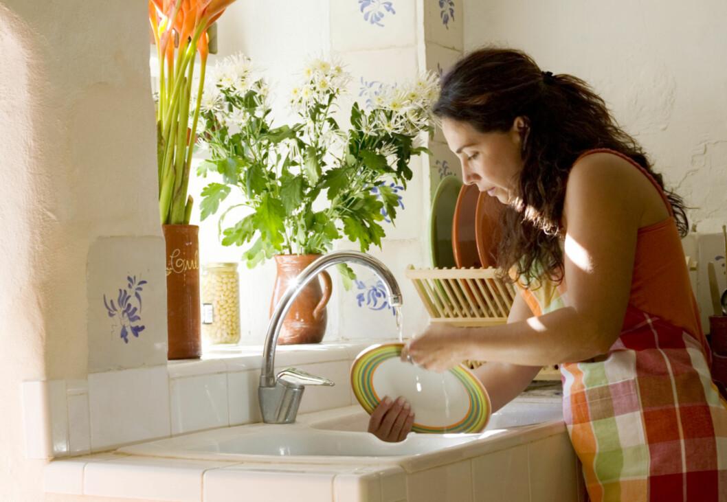 HUSK Å SETTE OPPVASKBØRSTEN TIL TØRK: Hvis du gjør det vil du redusere bakteriene, og den holder ut lenger.  Foto: Thinkstock.com