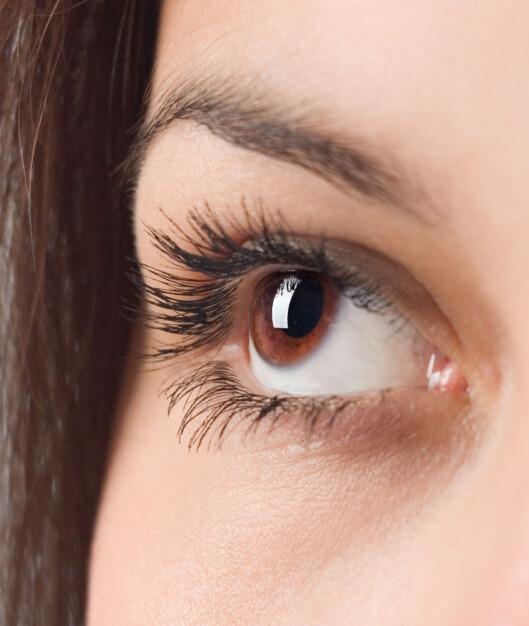 VOKSER UT IGJEN: Du trenger ikke fortvile dersom du har mistet noen øyebryn når du fjernet sminken. De vokser nemlig ut igjen, men det tar litt tid.