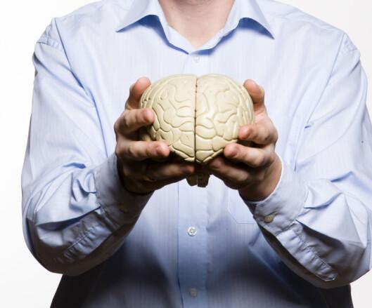 <strong>KRYMPER HJERNEN:</strong> Forskning har vist at det å lide av fedme eller være overvektig har en negativ innvirkning på hjernen og faktisk kan få den til å krympe.  Foto: Colourbox