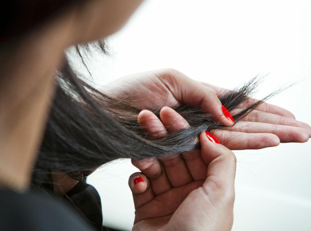 SLITTE TUPPER: Har du overbehandlet håret ditt? Det finnes råd! Foto: Per Ervland