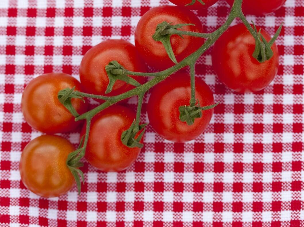 Tomater smaker best når de får ligge og modne på kjøkkenbenken. Foto: All Over Press