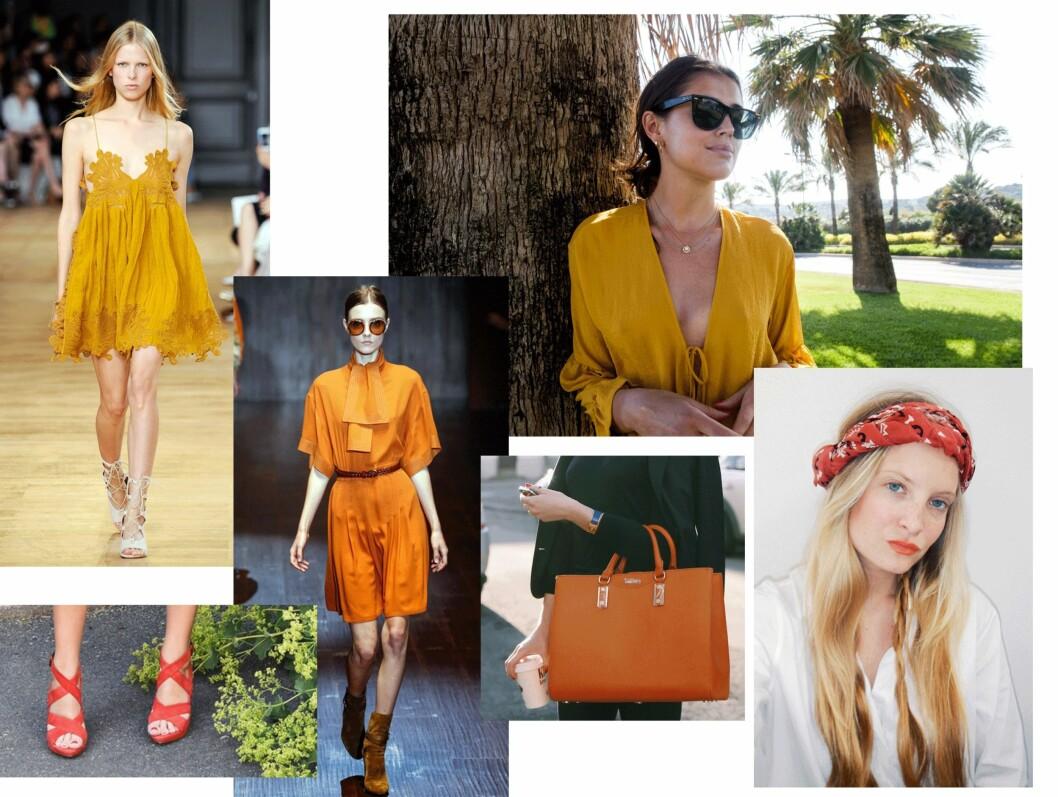 Oransje inspirasjon. Foto: Scanpix, Darjabarannik.com, Nathaliehelgerud.com