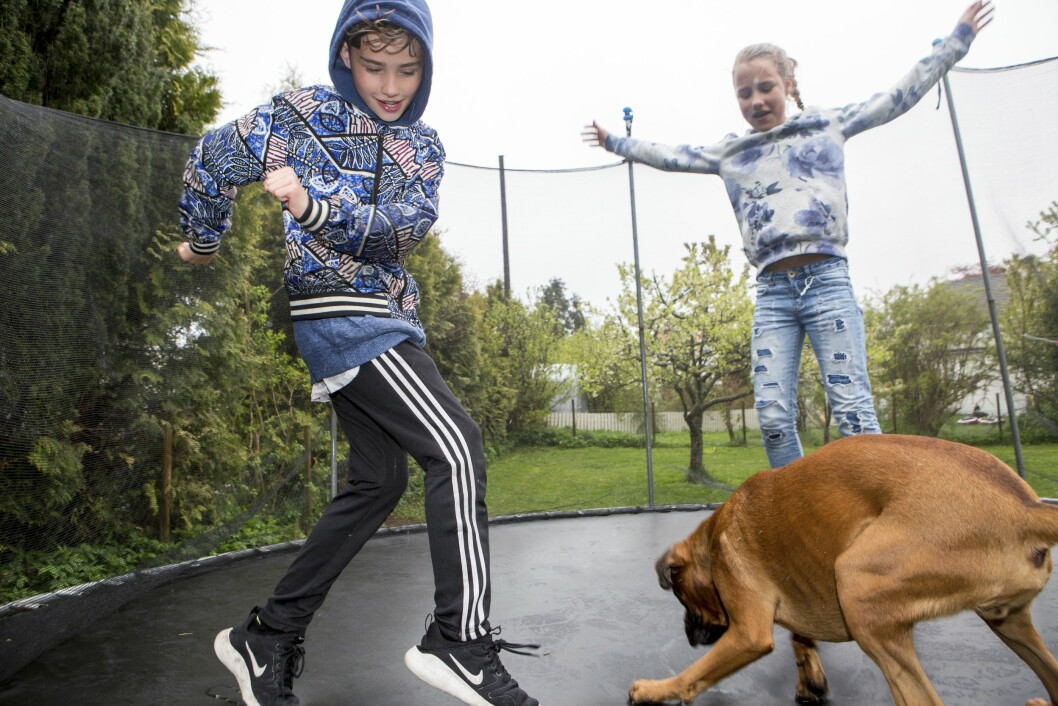 FULL FART: Nå er det igjen full fart på trampolinen for Hans Thomas, her med Lone Birgitte og hunden Alfred.  Foto: Charlotte Wiig