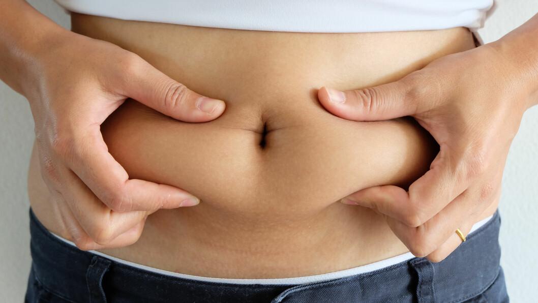 <strong>FETTLEVER:</strong> Forekomsten av fettlever øker i takt med at vi spiser mye fett og sukker, og drikker mer alkohol.  Foto: NTB Scanpix