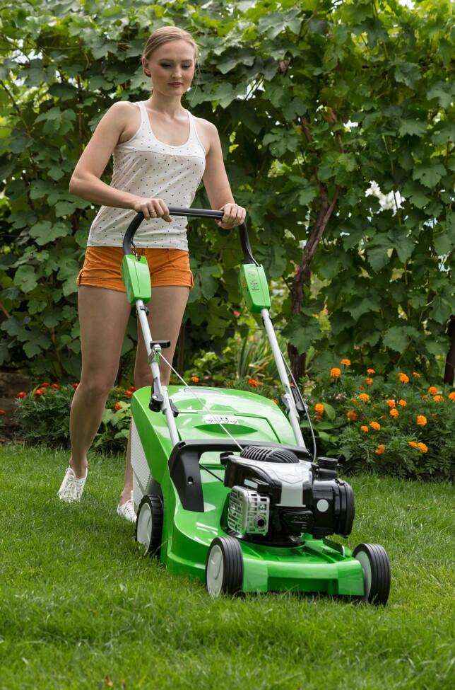 KLIPPE GRESSET HOS NABOEN? Du kan tjene opptil 6.000 kroner i året med å jobbe i hagen eller hjemmet hos naboen eller andre, uten å måtte oppgi det til Skatteetaten. Foto: Shutterstock/NTB Scanpix