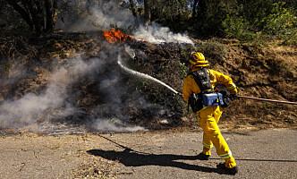 <strong>«HILL FIRE»:</strong> Brannvesenet jobber ennå for å slukke brannen i California. Foto: NTB Scanpix