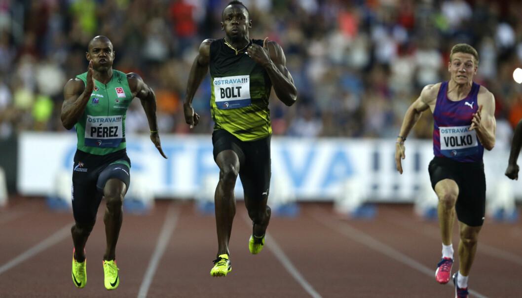 <strong>VANT IGJEN:</strong> Usain Bolt. Foto: NTB Scanpix