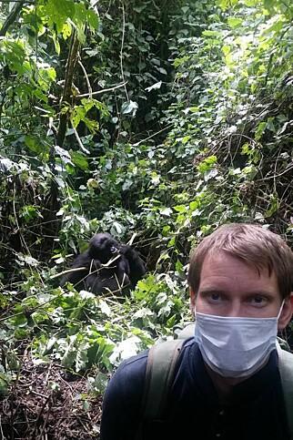 DYRELIV: Marius er opptatt av dyreliv, og et høydepunkt var gorilla-safari i Kongo: Foto: Marius Johansen
