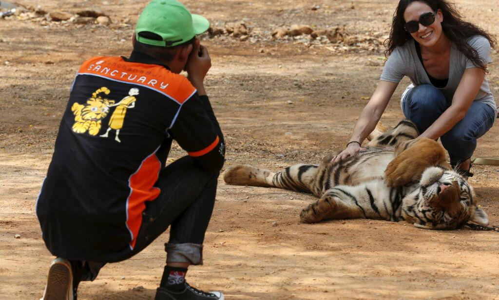 image: Ikke la deg sjarmere! Avslører sannheten bak turistdyrenes brutale liv