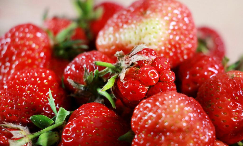 ANTALL BÆR: Meny-kurven inneholdt tilsammen 36 bær. Foto: Ole Petter Baugerød Stokke.