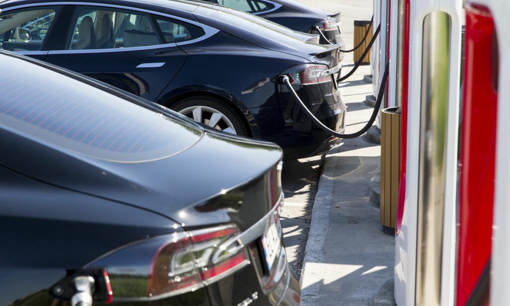 MOMS: Momsfritaket gjør kostbare elbiler som disse billigere å kjøpe. Men nå vil Frp ha bort denne subsidieringen og heller bruke milliardene på lavere bompengetakster. Foto: Tore Meek / NTB scanpix