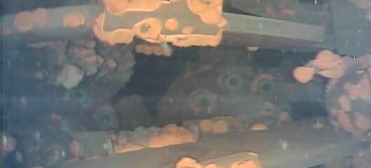 Har funnet smeltet atomdrivstoff i Fukushima-reaktor