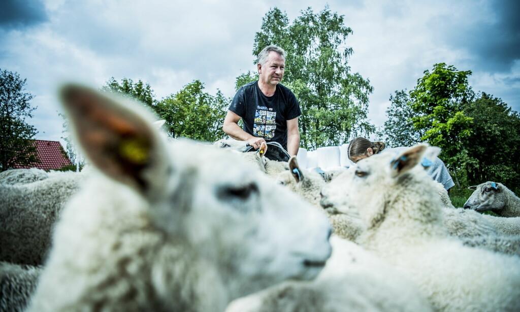 - AVLROLIG: Kjetil Ulset mener situasjonen på Gran er alvorlig. Foto: Thomas Rasmus Skaug / Dagbladet
