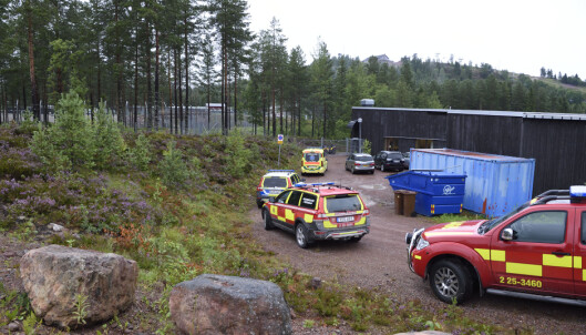 Tenåring døde etter bjørneangrep i svensk dyrepark