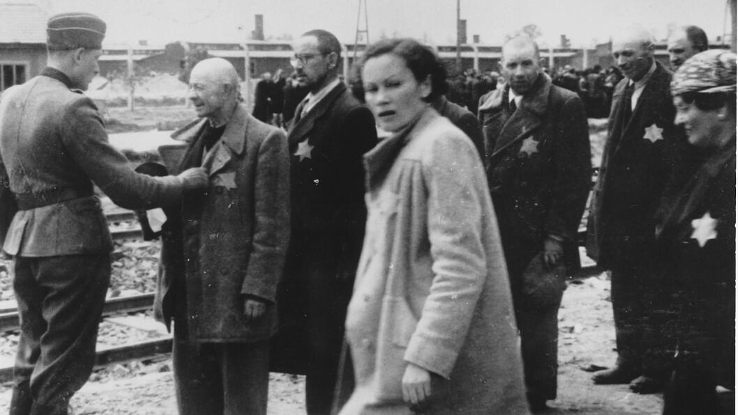 TRAGISK SKJEBNE: Dette bildet er tatt under utvelgelsen av ungarske jøder i Auschwitz-Birkenau i juni 1944. Fotografiet er en del av «The Auschwitz Album», som Lilly Jacobs fant ved en tilfeldighet i Dora-Mittelbau-leiren i 1945. Foto: NTB Scanpix