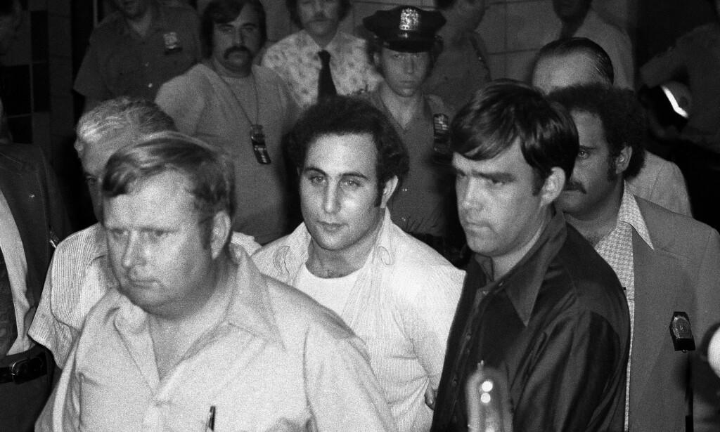 SON OF SAM: Fra 1976 til august 1977 skjøt «Son of Sam» David Berkowitz 13 personer med en 44-kaliber revolver, hvorav seks av ofrene døde. Han påstår også å ha startet 2000 branner i New York i perioden 1974 til 1977. «Son of Sam» ble pågrepet 11. august 1977. Foto: NTB scanpix / AP Photo / Ira Schwarz