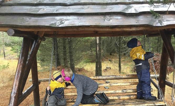 BRØDRENE: Skogen er en god plass å være for Daniel og smøbrødrene, der er det ikke for mange inntrykk.