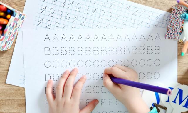 Bilderesultater for hjemmeundervisning