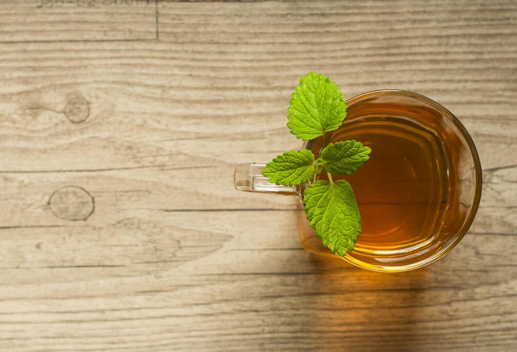 KRAMPER?: Dersom du er plaget med kramper i forbindelse med mensen kan det hjelpe å drikke mynte-te. Mynte skal nemlig kunne ha en positiv effekt på kramper.  Foto: ygor28 - Fotolia