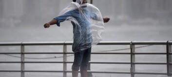 Tolv døde etter tyfon sør i Kina