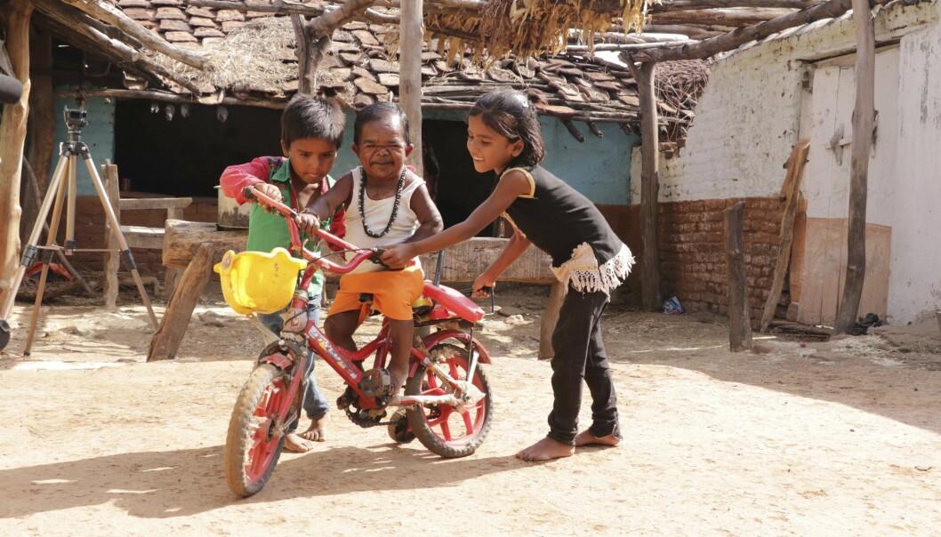 LAVERE ENN NIESEN: Basori har god kontakt med barna til sin bror, og liker å leke med dem, selv om de har vokst ham over hodet. Foto: Rare Images/Barcroft Media.