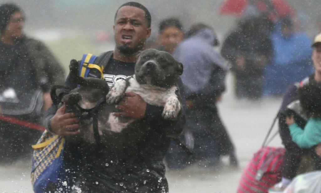 image: Innbyggere sør for Houston evakueres etter at et dike har brutt sammen