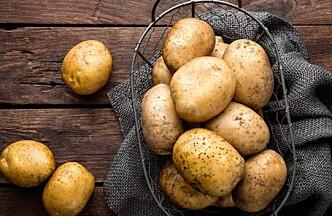 Optimal lagringstemperatur er 5-6 grader. Blir det for kaldt blir poteten søt.