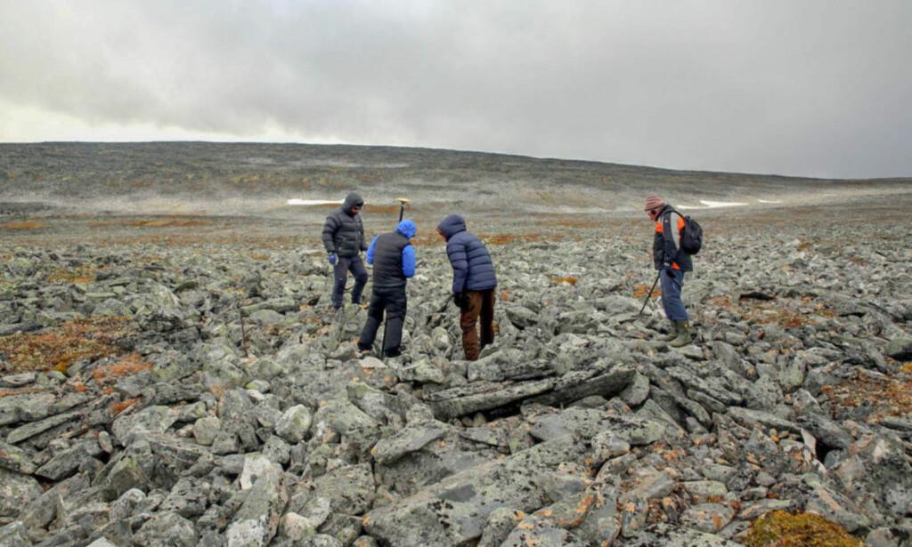 MYE VIL HA MER: Fylkesarkeologene tok med seg turfølget opp for å se om de kunne finne flere vikinggjenstander. Foto: Espen Finstas, Secrets of the Ice/Oppland Fylkeskommune