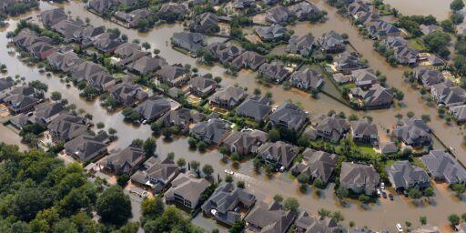 image: Kampen mot varmegradene: - Deler av jorda kan bli ubeboelig grunnet ekstreme hendelser