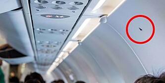 Har du lurt på hva disse små trekantene inne i flyet betyr? Her er svaret