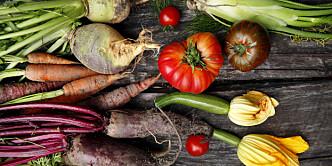 - Den viktigste grunnen til at jeg ikke er vegetarianer, er at jeg elsker grønnsaker
