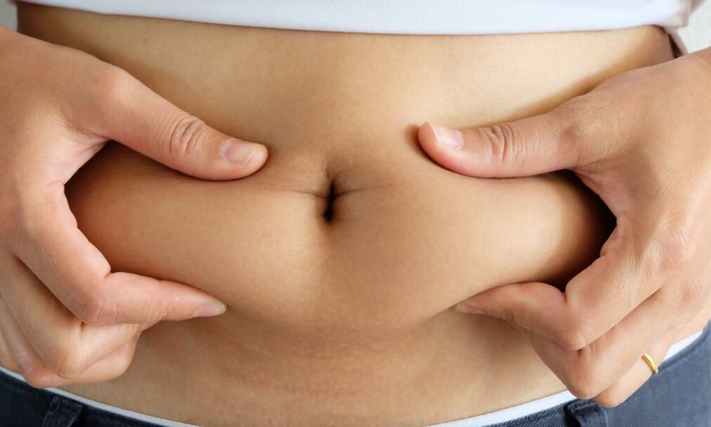 FETT: De siste årene har forskerne fått mer kunnskap om fettvevets mange funksjoner. Nå regner de fettet vårt som et organ, på linje med kroppens andre organer. FOTO: NTB Scanpix