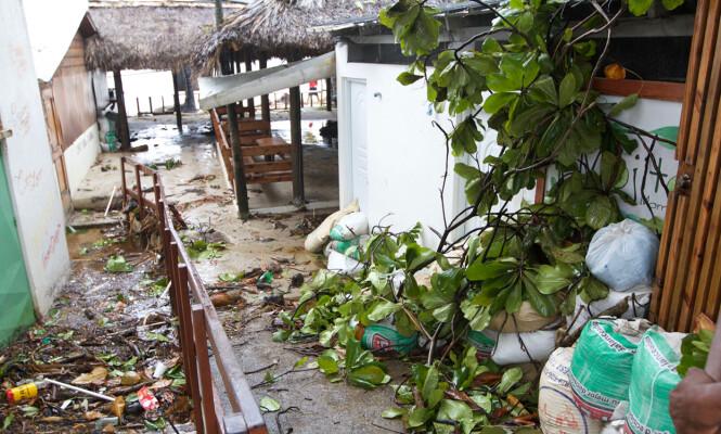 <strong>KAOS:</strong> Landsbyen der Hege Holt bor var tydelig merket etter orkanen «Irma». Foto: Hege Holt