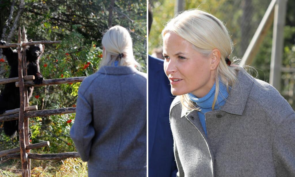 TETT PÅ DYRENE: Kronprinsesse Mette-Marit fikk se jerv og andre rovdyr på nært hold under besøket i Nord-Trøndelag onsdag. Foto: Andreas Fadum.