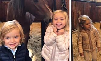 Prinsessens hestebilder sjarmerer svenskene