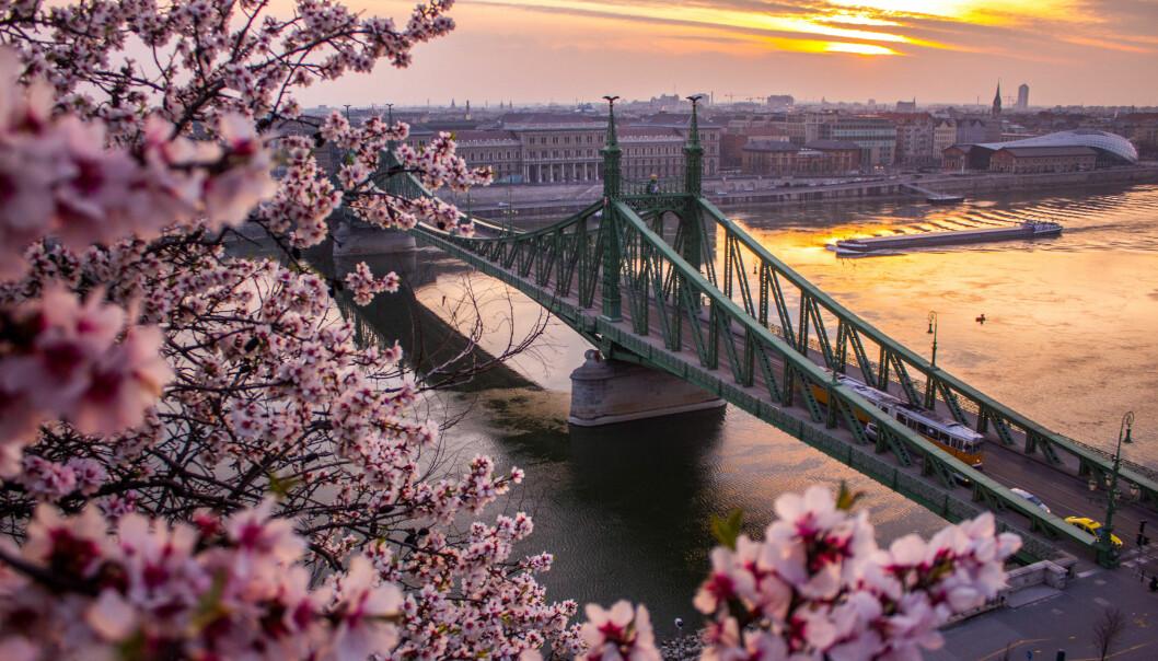 <strong>STORBY WEEKEND:</strong> Det er ikke bare Roma og Paris som burde stå på din storbyferie-liste. Sjekk ut disse fem favorittene! Foto: NTB Scanpix