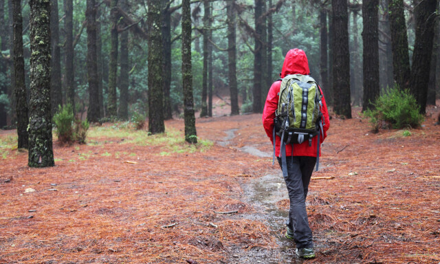 a84a582a HVER TIL SITT BRUK: Forskerne råder deg til å bruke regnjakke når du  trenger regnjakke