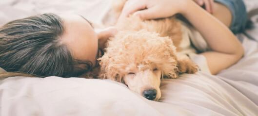 Bedring av søvnplager kan redusere symptomene på psykiske lidelser