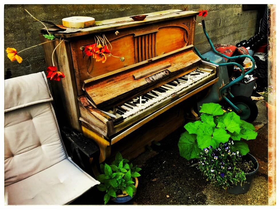 BAKGÅRDSSYMFONI: Folk må reise mer i Norge. Kanskje en stopp i Ålesund der vi hos Teaterfabrikkens eventyrslott fant dette pianoet som selvsagt var stemt i vær, vind, sol og regn. Foto: Tom Stalsberg