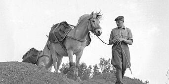 image: NY UTVIKLING I: Noen som kjenner igjen denne soldaten og hesten på Toten?
