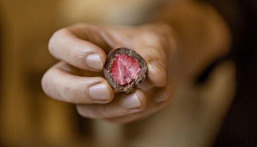 FRISKT: Frysetørkede jordbær i sjokolade. Foto: Jørn H Moen / Dagbladet