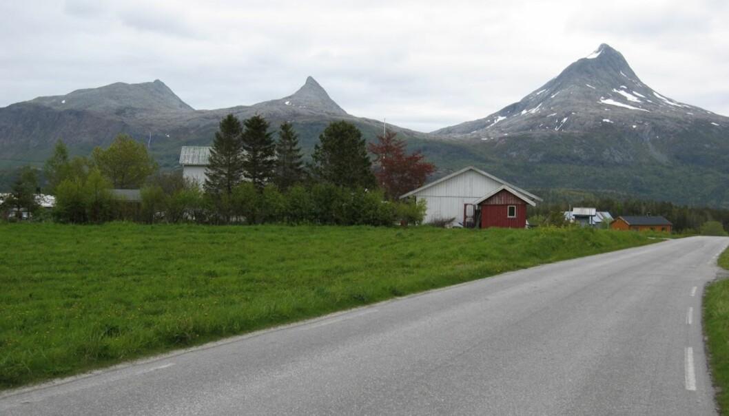 <strong>VILT OG VAKKERT:</strong> Den andre uka på sykkelsetet, og både vær og landskap blir bare finere og finere. Helgeland er dessuten fantastisk sykkelvennlig.