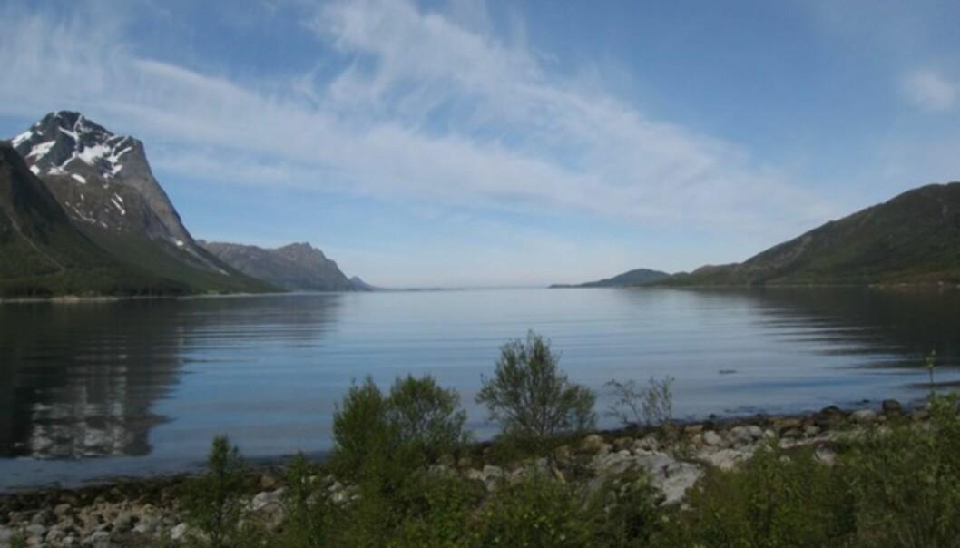 """<strong>SYKT VAKKERT:</strong> Når man leser kart og finner steder som heter """"Breivik"""" eller """"Reppen"""", forventer man ikke at det ser slik ut på stedet. Nordlendinger er altfor nøysomme. Hadde dette landskapet ligget utenfor Bergen hadde det garantert hatt navn a la """"Paradisbukten"""", """"Himmelfjorden"""" eller """"Eventyrvågen""""."""